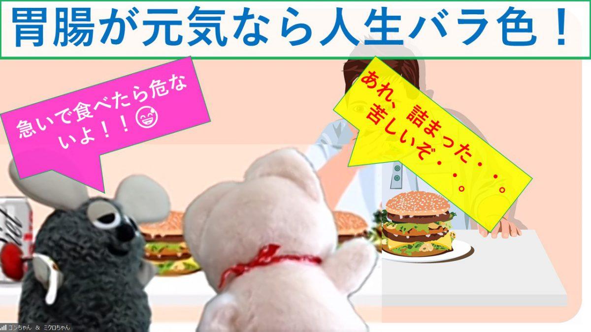 「胃腸が元気なら人生バラ色」【痛快科学番組】Vol.11
